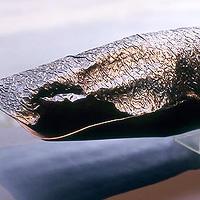 (nature + copper) hPa vol.0606